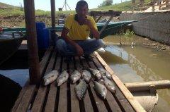 peney_fish_12.jpg